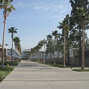 Cal State Fullerton (CSUF) - M.F.A. In Screenwriting