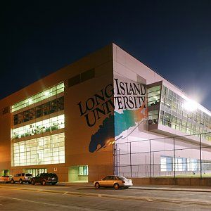 Long Island University - School of Visual and Performing Arts